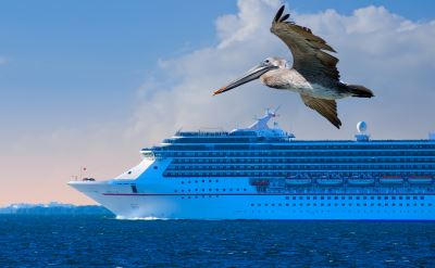 Calendar Of Day Cruises From Fort Lauderdale Florida - Key west cruise ship calendar